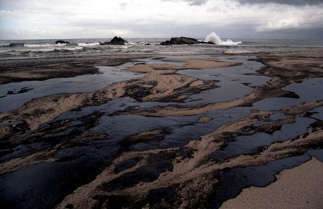 "A Spill of Over 250,000 Litres of ""Impossible to Clean"" Oil Off the Coast of Newfoundland"