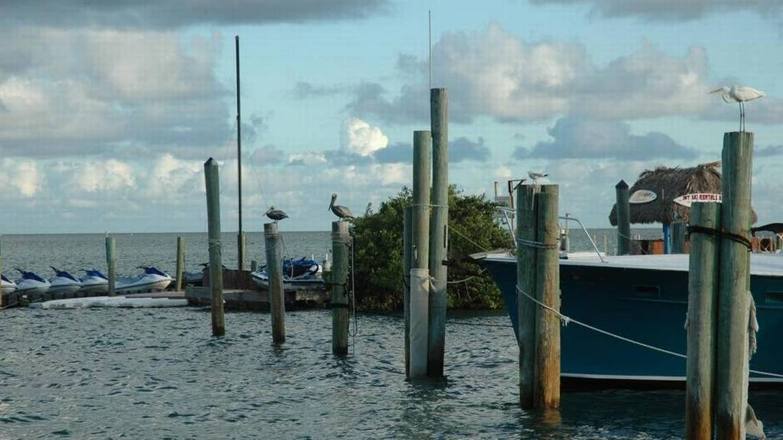 Assistant Governor Scott dies in maritime accident in the Keys