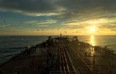Biofuel As An Alternative to Fuel Oil: The Danish Shipping Company Has Tried