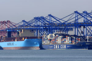 Container carriers cartel