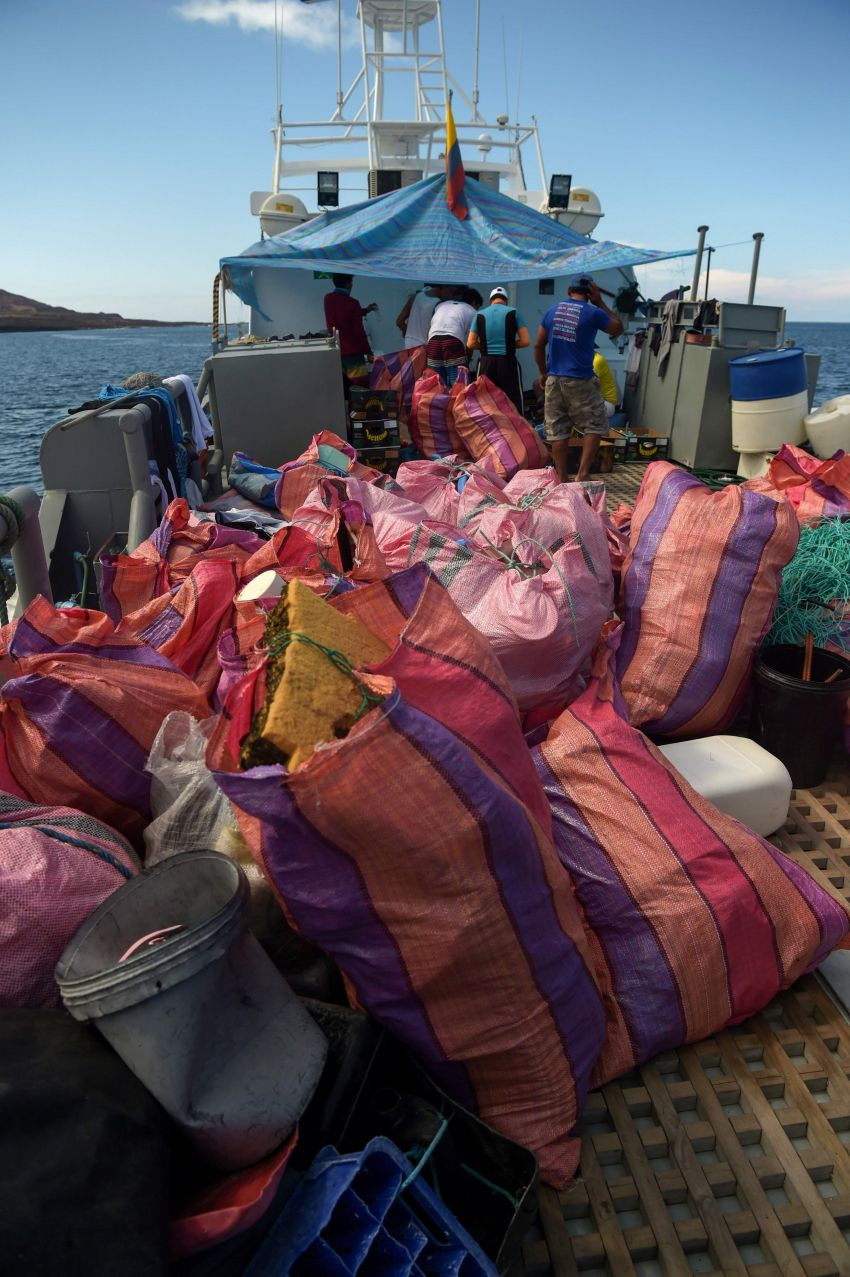 From Paradise to Garbage Dump: The Galapagos Island, Threatened by Tons of Plastic