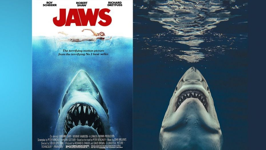He Wanted To Replicate The 'Jaws' Image In Real Life Minus The Human Bait