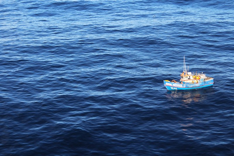 Illegal Fishing Within 200 Miles Represents Peru Losses of US $ 500 Million