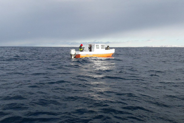 Lost in the Barents Sea small boat was towed to the port