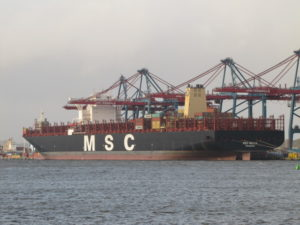 MSC Maya container ship