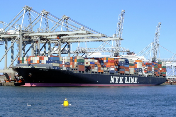 Largest shipping companies of Japan reported finance losses
