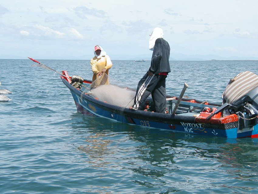 Piracy Hits the Fishing Sector