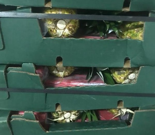 Police Find 133 Kilos of Cocaine Hidden Among Loads of Pineapples That Went to Ireland