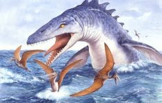Reveal the Origin of the Fossils of a Marine Monster Discovered in Kansas