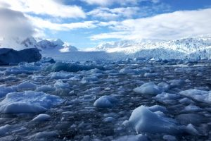 Small Big Secrets of Antarctica