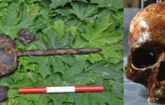 They Discover in Sweden a Submarine Cemetery of 8,000 Years Ago With Skulls on Stakes