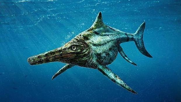 The Mystery of the Ichthyosaurus: Similar to the Dolphins but Related to the Turtles