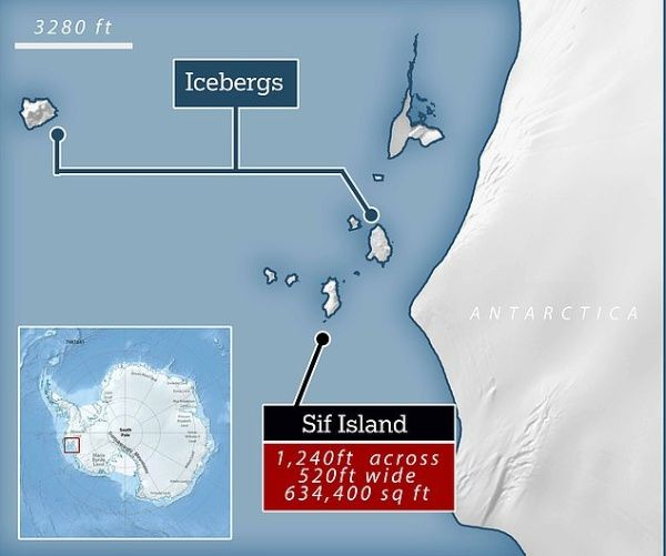They Discover A Hidden Island In Antarctica Thanks To Climate Change3
