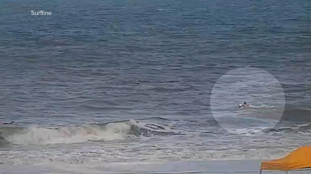 Three Shark Attacks Were Recorded In Florida Over The Weekend