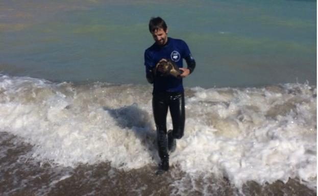 Young Veterinarian Saves Turtle With An Injured Neck in Almenara Spain