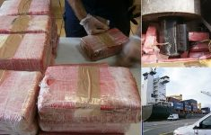 They Find, in Valencia 325 kg of Cocaine in Two Containers From Chile