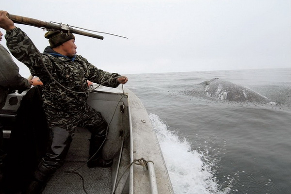 A boat of sea hunters collided with an ice floe in Chukotka, two people died