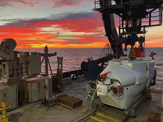 Amazing! Deepwater Microbes Could Clean Up Oil Spills