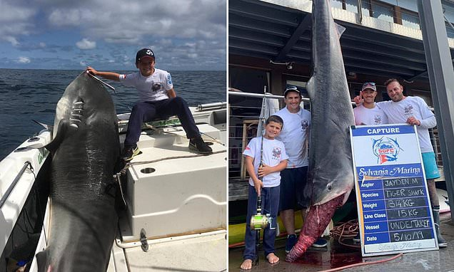 An 8 Year Old Boy Catches A 700 Pound (314 kilos) Tiger Shark In Australia