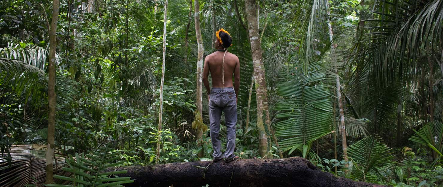 Covid-19 In the Amazon: Expanding Collaboration With Armed Forces To Serve Indigenous Peoples