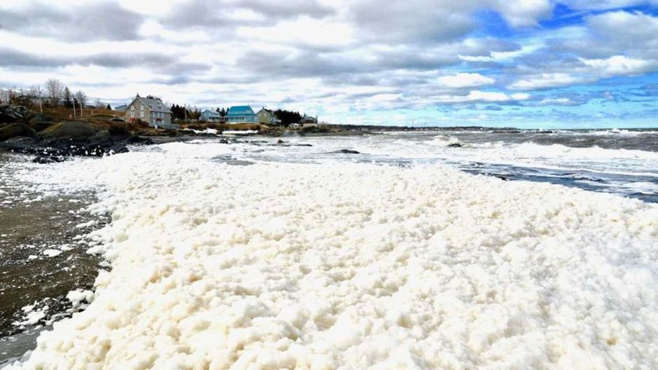 Foam Phenomenon On The Bank Of St. Lawrence River In Sainte-Luce, Quebec