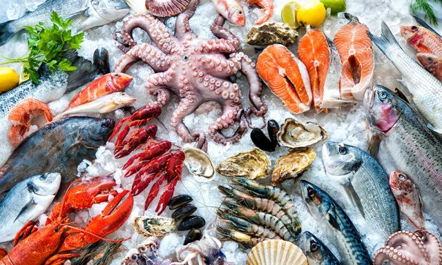 Food from the sea, alternative for a healthy life