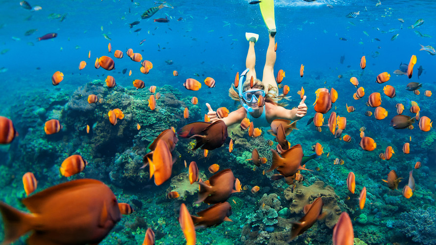 Hawaii Bans Sunscreen Containing Chemicals to Protect Marine Life