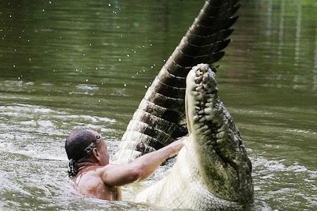 He Climbs On The Back Of A Huge Crocodile After Feeding Him A Live Chicken