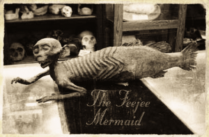 Horror Stories Fiji's Mermaid