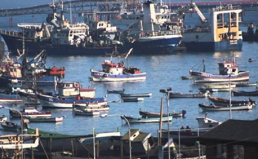 Industrial Fishing Companies Number Around US $2,700 Million Per Year in the Illegal Fishing Business in Latin America