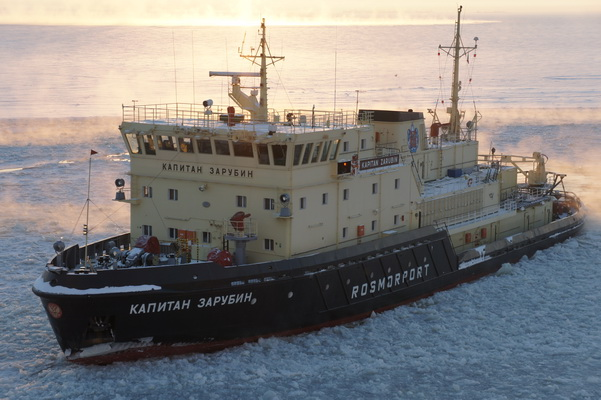"""Information About Icebreaking Trips FSUE """"Rosmorport"""" in the Seaports of Russia on February 25, 2019"""
