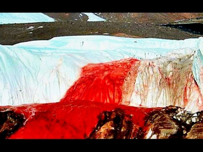 Resolved the Mystery Organized Visits to Antarctic Red Cataracts