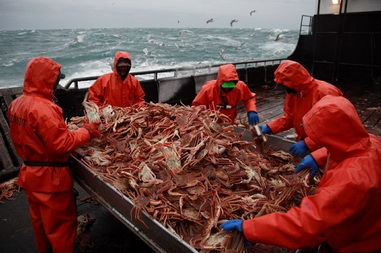 Tanzanian-Flagged Vessel Confiscated for Poaching a Crab in the Exclusive Economic Zone of Japan and Russia