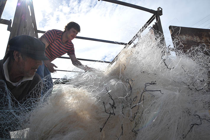 They Will Recycle 100 T Of Fishing Nets In Chilean Waters