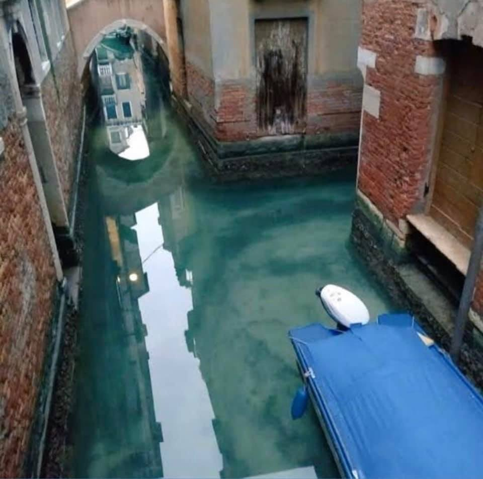 This Is How The Canals Of Venice Italy Look During Quarantine2