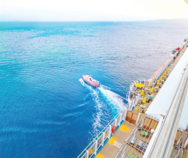What Happens When Someone Falls into the Sea from a Cruise Ship