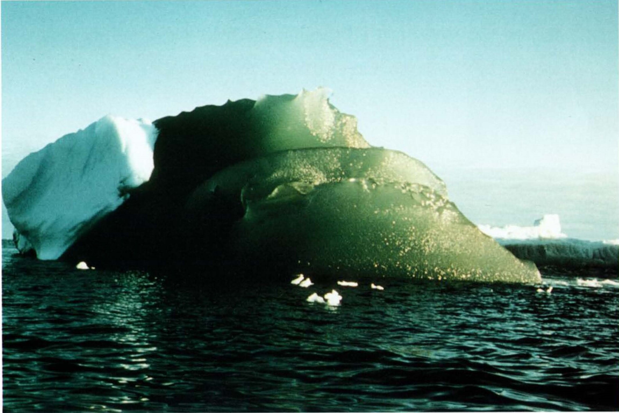 Why Are There Green Icebergs in Antarctica?