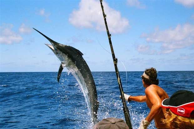 the Offshore World Championship sport fishing tournament will take place at Marina Pez Vela, Quepos